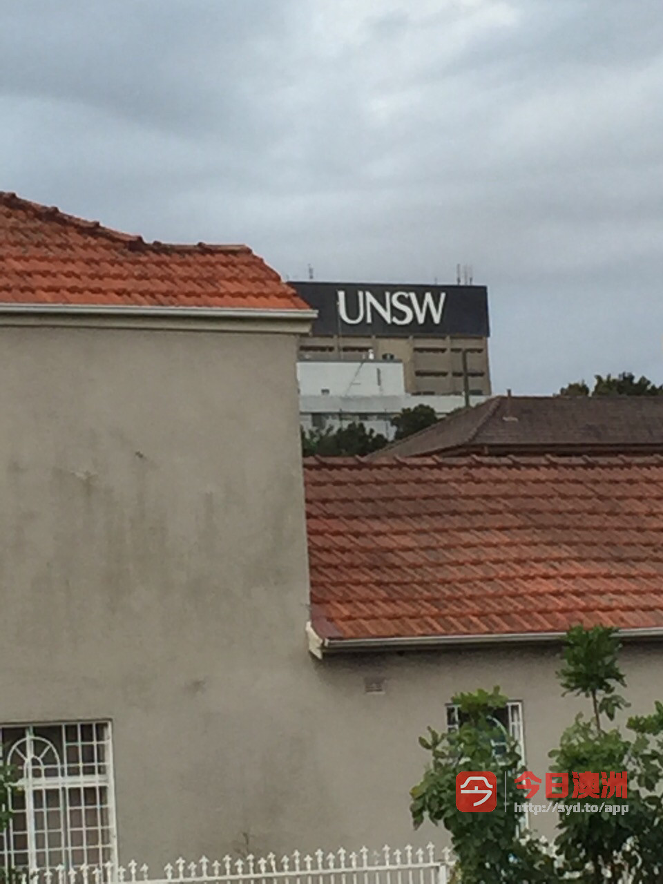 Kingsford    独立空调阳光大房 徒步1分钟UNSW大学bus站超市饭店