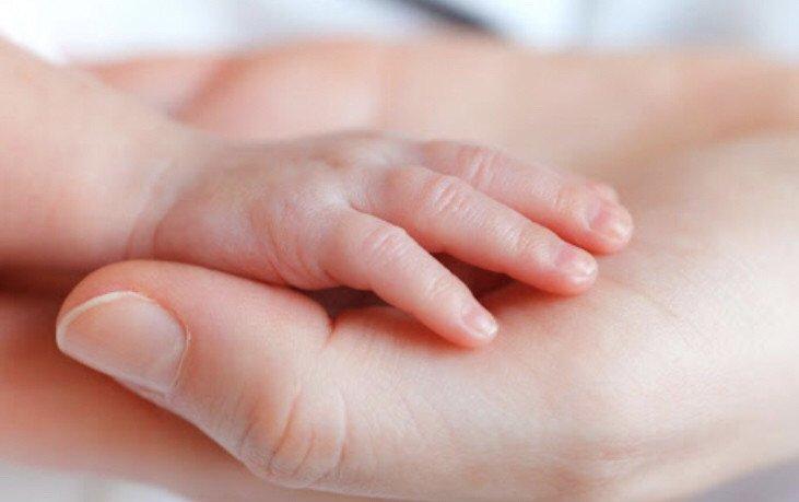 更新可接21年1月初开始的单   金牌持证月嫂育婴师催乳师资格证书8年本地工作经验