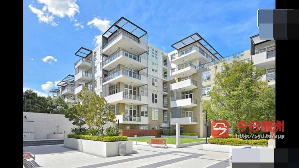 Meadowbank 整洁3房特价250现代公寓单间招单人