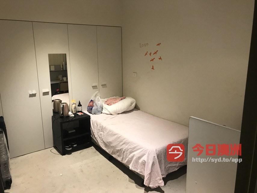 Melbourne City 墨尔本CBD一主卧室出租