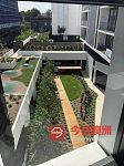 Glebe 近悉尼大学UTS 一房一厅新公寓出租