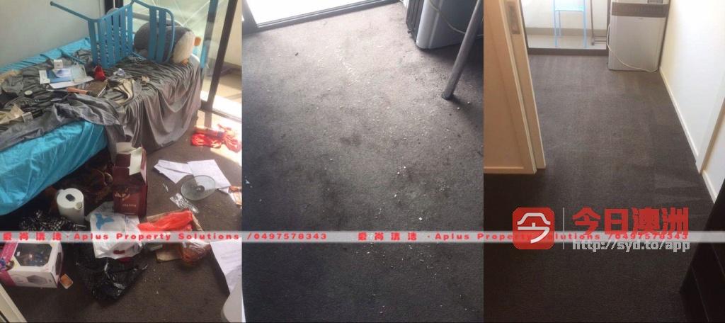 专业清洁服务合理收费质量保证7天工作