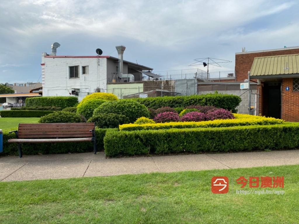 专业花园园艺割草砍树安装各种围栏家具家电回收搬家退房清洁疏通下水管道垃圾处理
