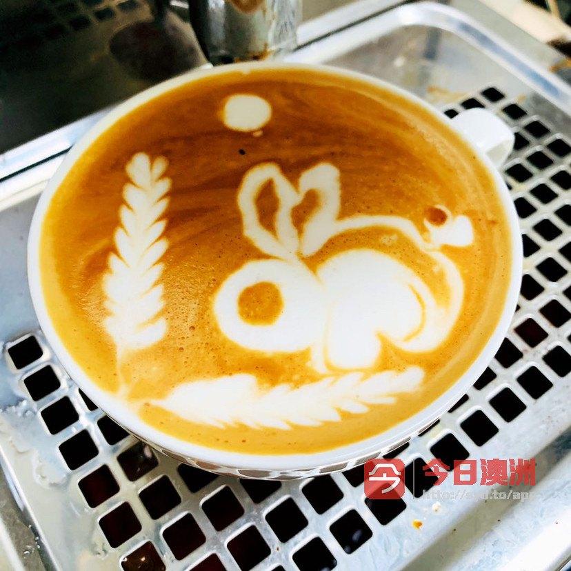 悉尼注册咖啡师 鸡尾酒调酒 食品安全 悉尼白卡