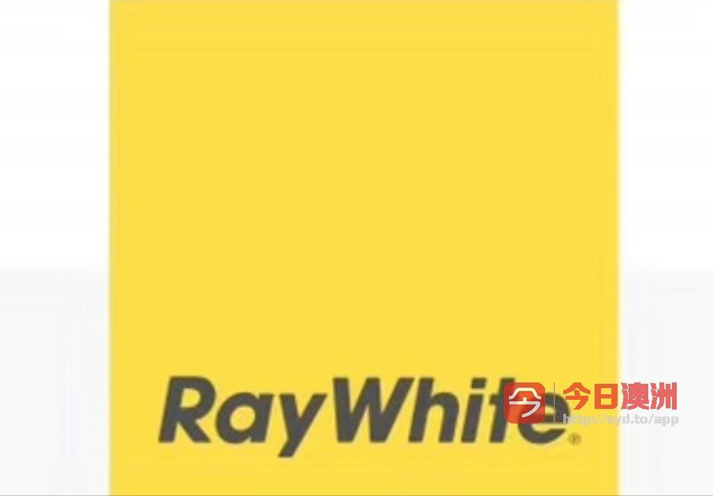 Ray White Eastwood 新团队招聘