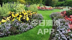 悉尼实惠花园维护物业清洁