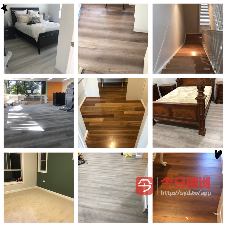 专业地板地毯油漆公司
