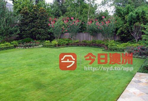 花园修整打理及花园工程生意转让