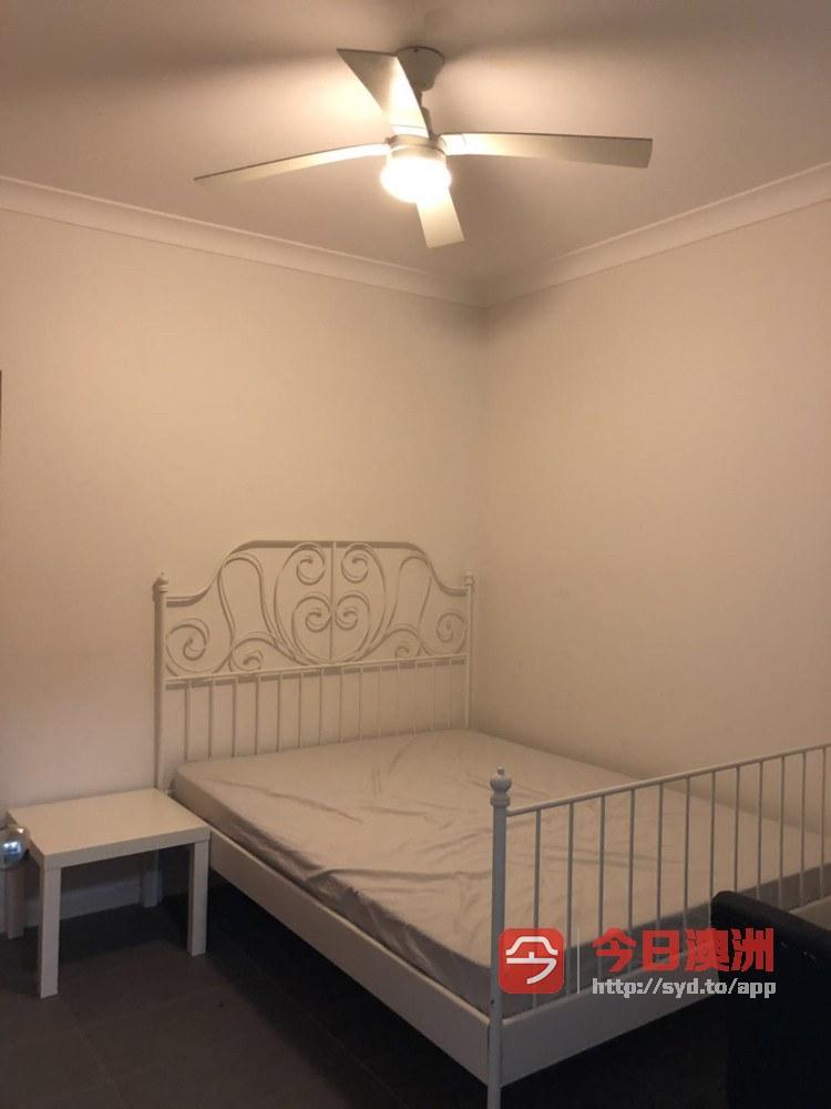 Kelvin Grove QUT 校区公寓单间出租