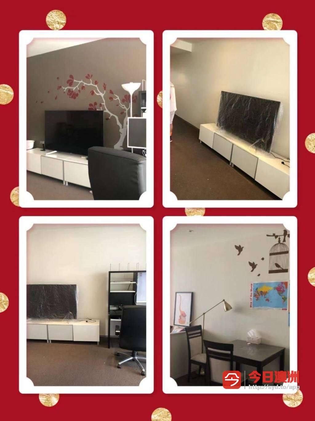 专业油漆 地毯修高压清洗 墙面修复  退租日常清洁 垃圾处理