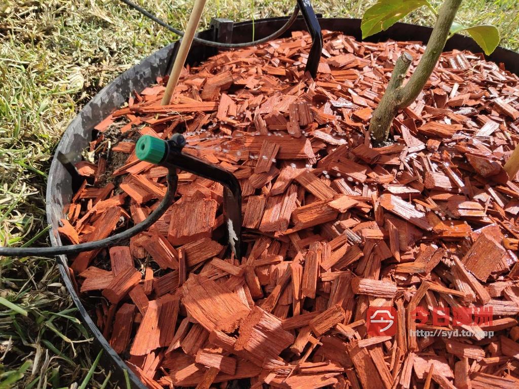 花园全自动浇灌安装维修