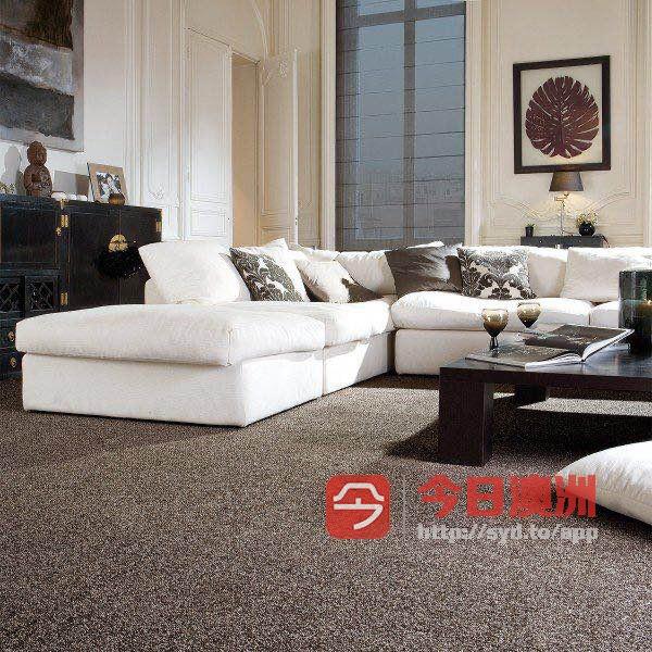PO安装出租房地毯修补服务