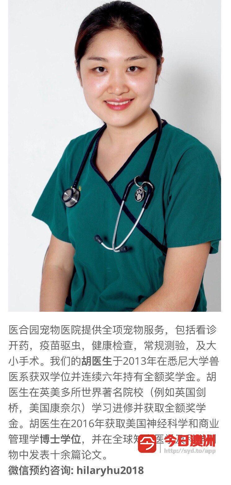华人宠物医生 VET医合园宠物医院