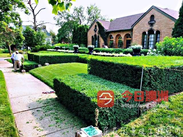 悉尼专业花园工程施工 花园修剪整理服务