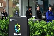 冒领澳洲华人疫情补贴,骗子月入$15万!记者暗访