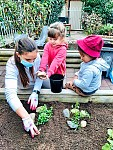 播下开启孩子们知识之种子  —  记早教中心春天的园艺活动点滴
