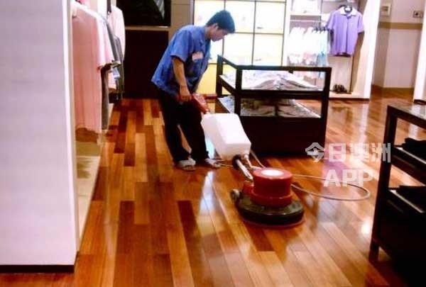 水晶天使清洁公司中介指定的清洁公司承接所有类型清洁杀虫服务0404381300