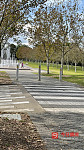 Sydney Olympic Park olympic park车位出租26元
