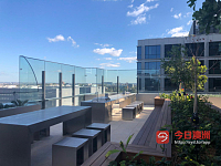 Chippendale 中央公园 Duo Limited高层 city view 包家具 gas bill