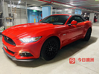 Ford 2017年 Mustang 敞篷野马 50 GT