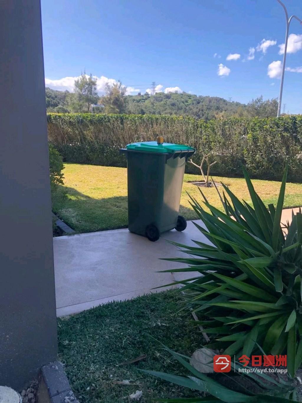 花园修剪整理设计施工专业围栏rence凉棚专业铺设真假草坪花园园艺割草