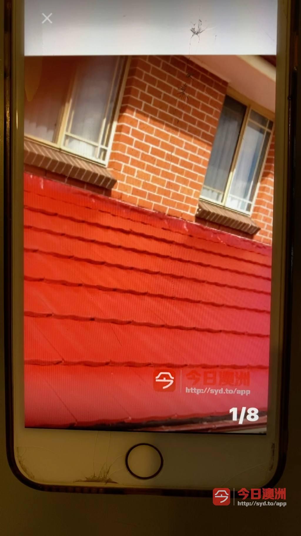 室内外装修屋顶漏水洗瓦喷漆