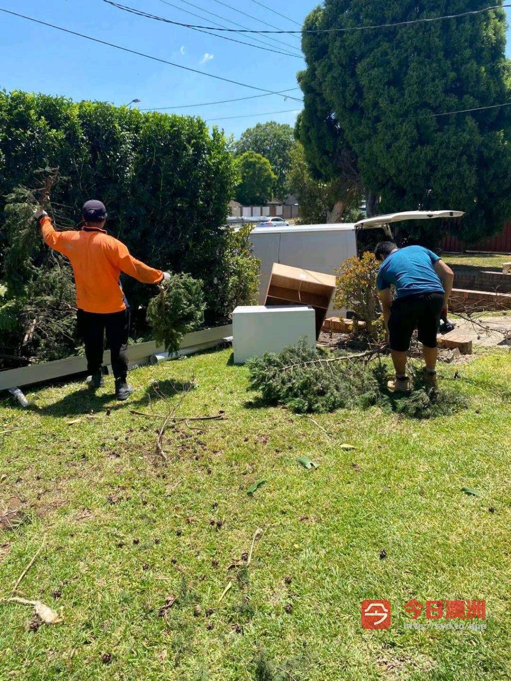 悉尼花园护理垃圾处理