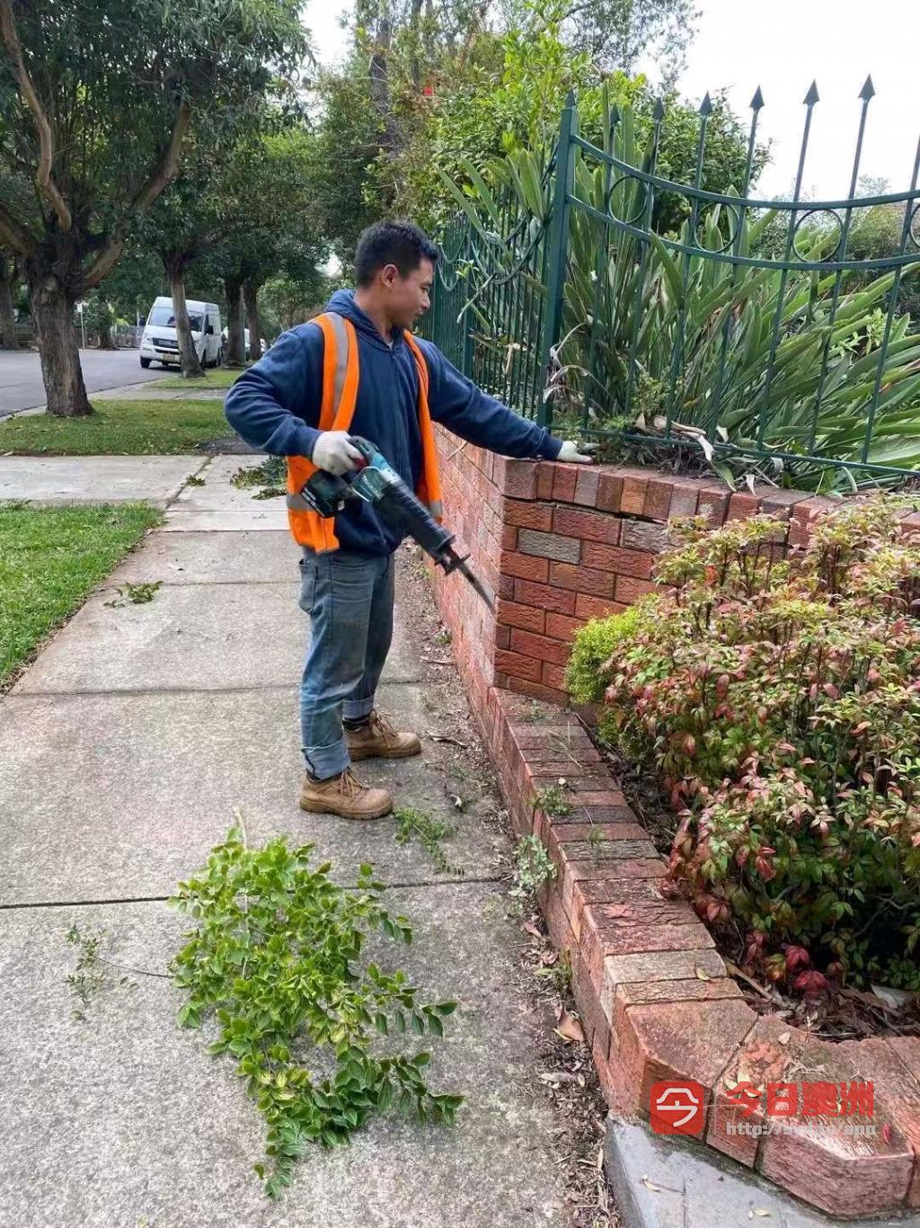 搬家清洁家具处理花园整理一条龙服务