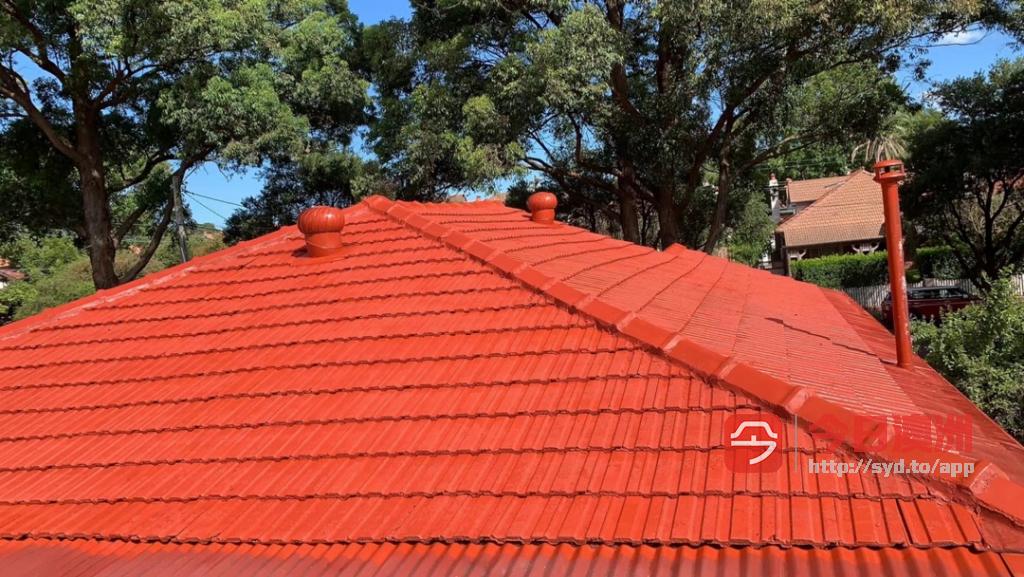 专业洗瓦喷漆 屋顶漏水 清洁雨水槽 紧急维修  花园整理 更换地毯地砖